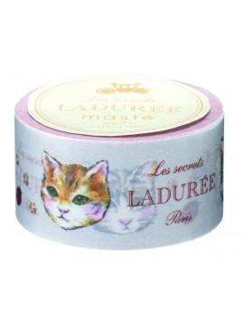 Masking Tape Portraits de chats - LADURÉE
